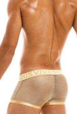 boxers transparentes